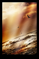 Echoes in Time (Art Photography South Africa | Nico van der Merwe) Tags: ocean sunset orange seagulls birds sunrise freedom see flying interesting rocks whitewater exposure artist foto fotograf photographie shadows arty seascapes bright wind african unique oneofakind surrealism fear fineart flock flight arts sunny spot burn fotos artists dreams flare afrika rays mayday dreamlike shattered storms oceanview economics avian sunray vogel afrikaans loose groups decisions fineartphotography splashing surrealart implode lightray postkarten scorch postcardpretty fotografer uvlight fightback voel oceanart rollingwaves africaart seascapeart scenicsnotjustlandscapes takesflight soulmyst qualitysurroundings nicovandermerwe adrinnesmagicaltour