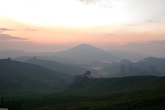 DSC_2184 (jasonlouphotography) Tags: nature sunrise cameronhighlands sgpalas