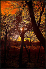 Rojo Atardecer (Ricardo Alguacil) Tags: trees sunset red canon atardecer rojo toledo cielo nubes 7d ricardo skys alguacil yourwonderland ricardoalguacil