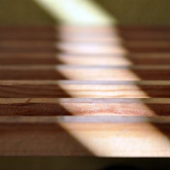 time to realise (SteffenTuck) Tags: morning light blur macro outside shadows exterior bokeh timber slats softfocus athome steffentuck