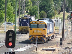 COOTAMUNDRA RAIL YARD LOOKING SOUTH FROM THE PEDESTRIAN OVERPASS (rob3802) Tags: diesel locomotive railyard cootamundra diesellocomotive 4854 8184 dieselelectriclocomotive 81class 48class