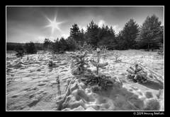 The winter landscape (Mariusz Petelicki) Tags: winter zima hdr canonefs1022mm 3xp canon400d mariuszpetelicki