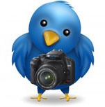 Photography on Twitter