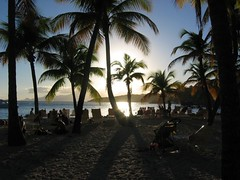 La Caravelle - Sainte Anne (@claudiamafalda) Tags: caribbean guadeloupe antilles gwada caraibi westindies guadalupa
