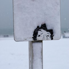 Tell me when it stops (Alex Bamford) Tags: winter snow beach sign sticker brighton explore seafront foe explored interestingness214 i500 alexbamford thebigbambooly masterpiecesoflightdark wwwalexbamfordcom