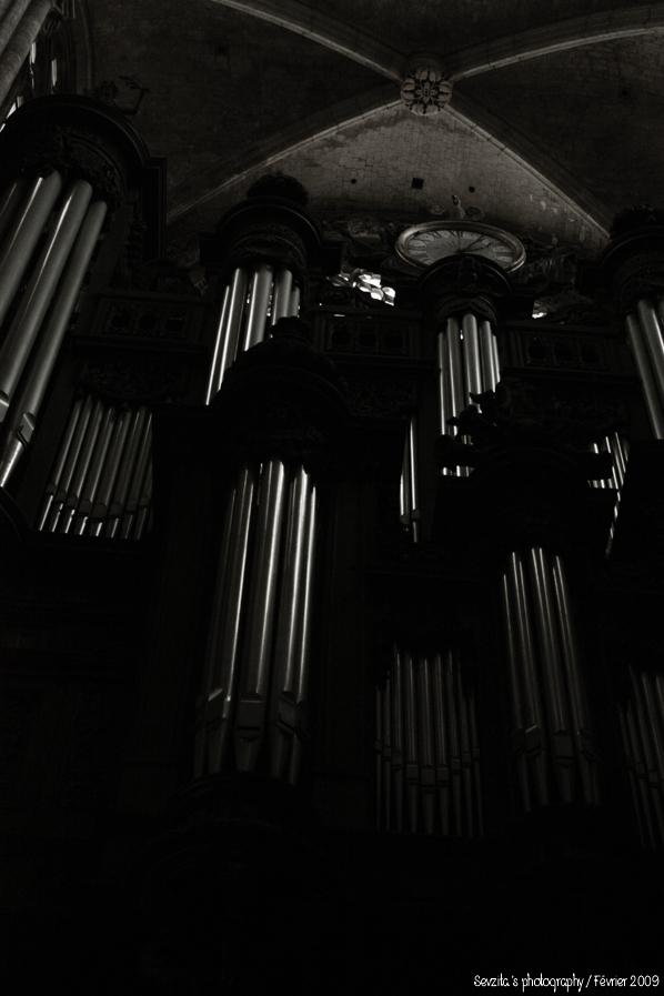 Notre Dame #11