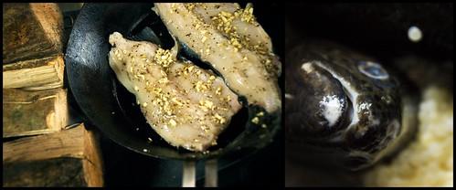 fish_for_dinner