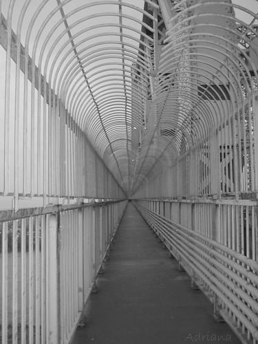 Puente Jean Cartier