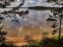 Lake Bol'shoi Ivan_01 (zorkisokol) Tags: trees summer sky lake reflection nature water clouds forest canon landscape russia breathtaking breathtakinggoldaward breathtakinghalloffame