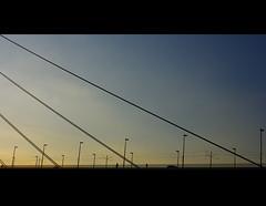 (It's Stefan) Tags: bridge blue sky lines silhouette germany geometry nrw minimalism brücke düsseldorf rhein minimalistic duesseldorf 桥 几何 pentaxk20d 均匀性