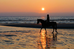 No worries. (hetty m) Tags: iris sunset beach strand zonsondergang noordzee zee dochter paard julianadorp strandrit aplusphoto theperfectphotographer