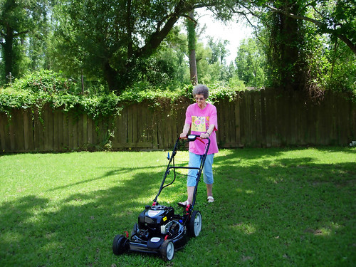 Grandma's New Mower