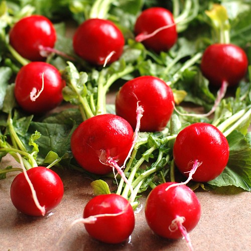 radishes: pretty much always in season