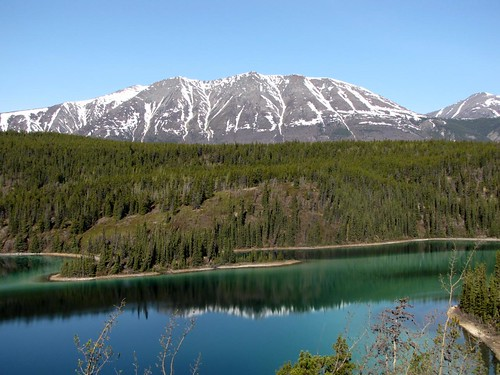 Alaskan Drive - Day 12-1