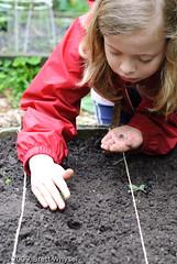 Josie_planting_basil