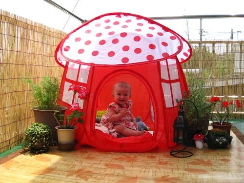 Stella's Magical Mushroom Tent