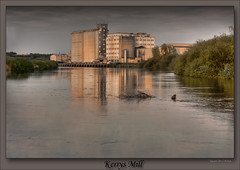 Golden Brown (roddersdad) Tags: canon reflections countryside flickr solitude outdoor lincolnshire mills bushes hdr 2010 gainsborough rivertrent dalgety flourmills canon40d 55250mmcanonlens kerrysmill stoneybight gainsboroughriverside dalgetyspillers