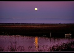 Wolf Moon Rising (champbass2) Tags: sky moon reflection nature water bright luna wolfmoon mywinners champbass2
