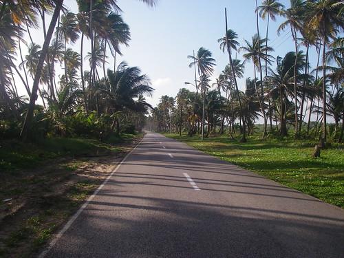 Manzanilla Mayaro Road