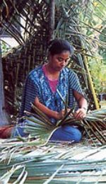 Tongan lady weaving