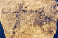 (beth mercer) Tags: uk travel england museum 35mm oxford ricoh assyria ireland2005 ashmolean reliefsculpture kr5superii 7thcenturybc sennacherib