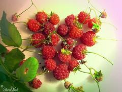 Raspberry Heart-2