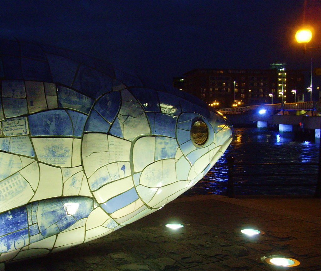 Belfast fish at night