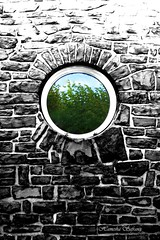 (From Afghanistan With Love) Tags: abstract afghanistan window stone wall germany garden photography gate bonn stonewall conceptual 2008 petersberg grandhotel    zeerak safrang hamesha javaid