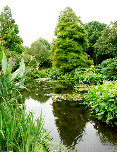 The Beth Chatto Gardens - On Reflection by antonychammond