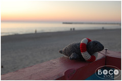 Seal in Lithuanian beach (bocozoo) Tags: bridge blue sunset shadow red sea favorite white cute nature animal toy grey zoo spring twilight play small crochet paddle seal brave unusual pup hook fin amigurumi lifebuoy flipper striped lithuania tack seadog stoic palanga resque nautic bocozoo sealery