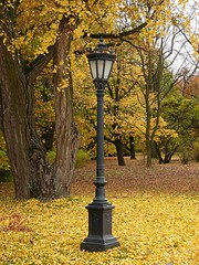 Lamp from a tale