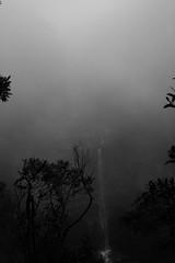 Katoomba Falls - bw