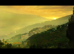 (digitalpsam) Tags: sunset lebanon mountain mountains pine forest wonderful spectacular warm mood middleeast serene lebanese heavenly liban metn mountlebanon sannine lebanesevillage goldenlandscape sammatta