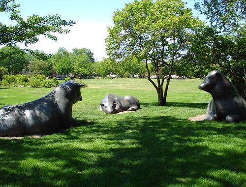 3 Giant Metal Bulls