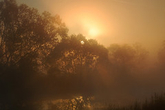 Faery Land (Andra Secelean) Tags: morning trees sky sun lake reflection water sunshine yellow fog forest sunrise nikon warm romania mistery fiatlux d40
