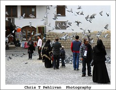 A Day in Damascus,SYR (CTPPIX.com) Tags: travel vacation people birds canon eos tour sam pigeons urlaub middleeast hijab tourist 7d syria souk ctp bazaar damascus sham cham syrian syr kapalicarsi suriye carsaf souria christpehlivan ctppix ortadogu elhamidiyeh hamidiyekapalicarsi guvencinler