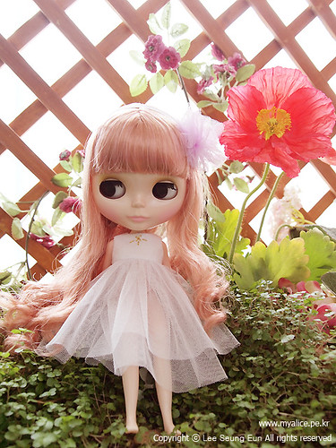 """Blythe """"Heart of Montmartre"""" by spring & summer."""