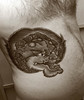 filip leu lion tattoo