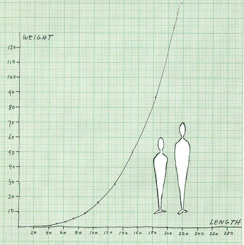 Weight And Height Growth Chart For Adults