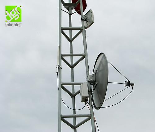 Dish wireless antenna