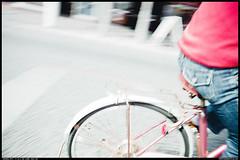 SIGMA DP1:SDIM4700 (so) Tags: bicycle sigma snap vehicle highkey foveon   dp1   so87photo