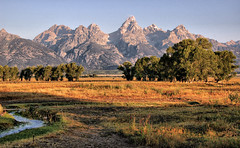 East of the Barn (Jeff Clow) Tags: trees landscape meadow tetons grandtetonnationalpark antelopeflats jacksonholewyoming