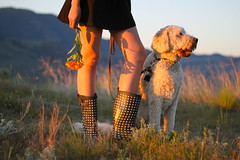 Polka With Me (marielle louize) Tags: flowers love girl sunshine spring britishcolumbia may polkadots valley grasses kamloops goldendoodle canonrebelt1i mariellelouize TGAM:photodesk=victoriaday11 polkadottedboot