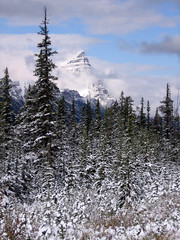 "Mt. Chephren (J Wells S) Tags: winter canada landscape alberta banff mtchephren canadianrockies ""flickraward"""