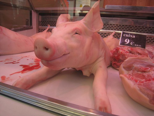 This little piggy will make a lot of people happy at the dinner table