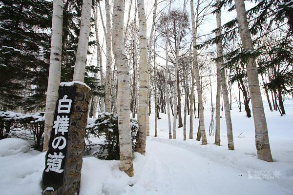2009北海道-D5-5-美瑛拓真館_06.jpg