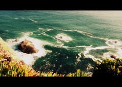 Who loves the Sea? (petitillusion) Tags: winter sea portugal atlanticocean cabodaroca vegetacion caperoca ilustrarportugal srieouro