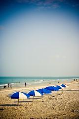 Beach Umbrellas (flynnkc) Tags: blue sky beach umbrella sand clearwaterbeach beachumbrella beachumbrellas