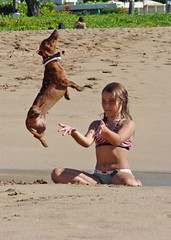 Girl Levitates Dog (Photographic Poetry) Tags: ocean family vacation favorite dog pet lake beach girl female swim puppy island hawaii fly concentration amazing mutt sand surf child power lift witch unique magic humor harrypotter canine rover maui eerie dachshund spell resort spooky lass illusion cast flip shore surprise mysterious unusual trick pup pooch airborne incredible 2009 wizzard soar warlock supernatural concentrate illusionist kaanapali levitate telekinesis magik weinerdog elevate kaanapalibeach prestidigitation magicshow sorcery hogwart thatsincredible slightofhand flickrsbest thegardenisle abigfave castingaspell hogwartsschool