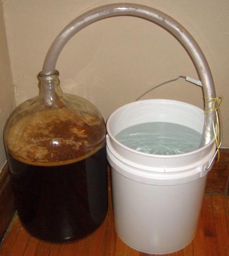 ferment 1